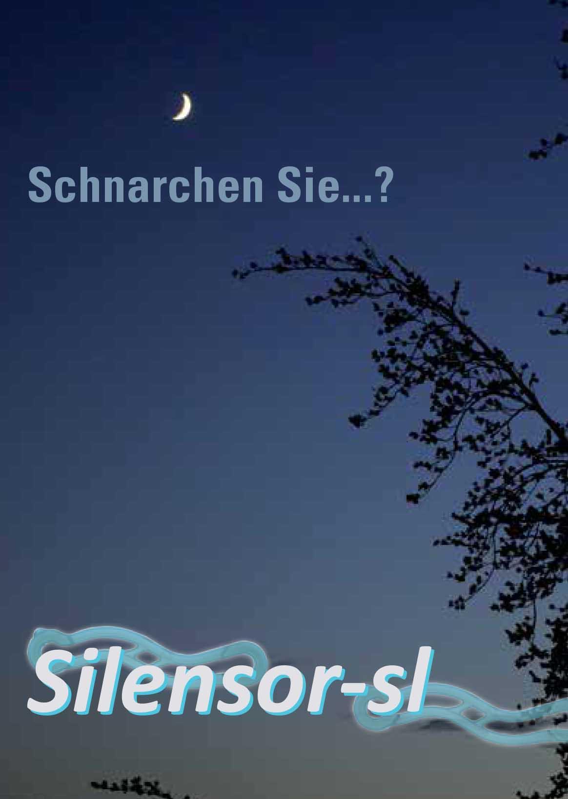 sl_silflyerDE-1_Titel